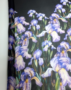 Silk Organza Fabric